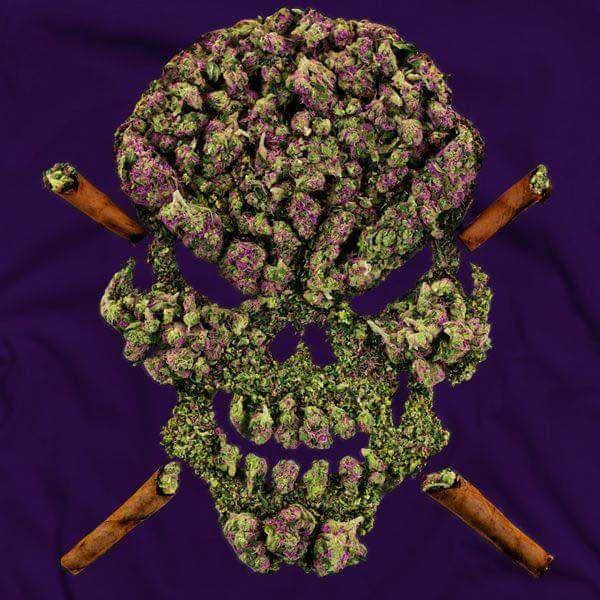 contaminated-weed